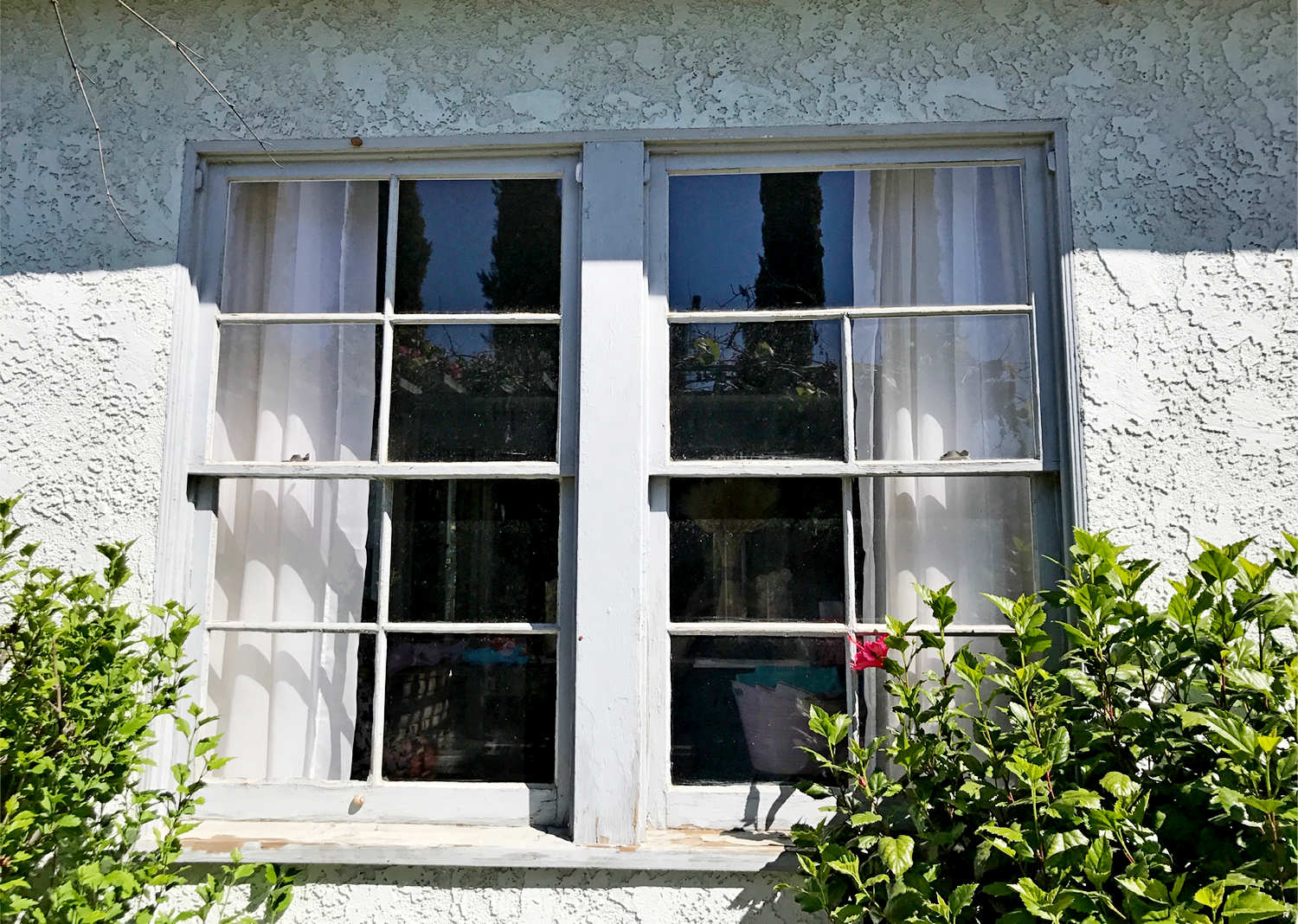 Dale M. In Whittier was tired of painting the wood jambs and sills and also had a lot of rotten wood.