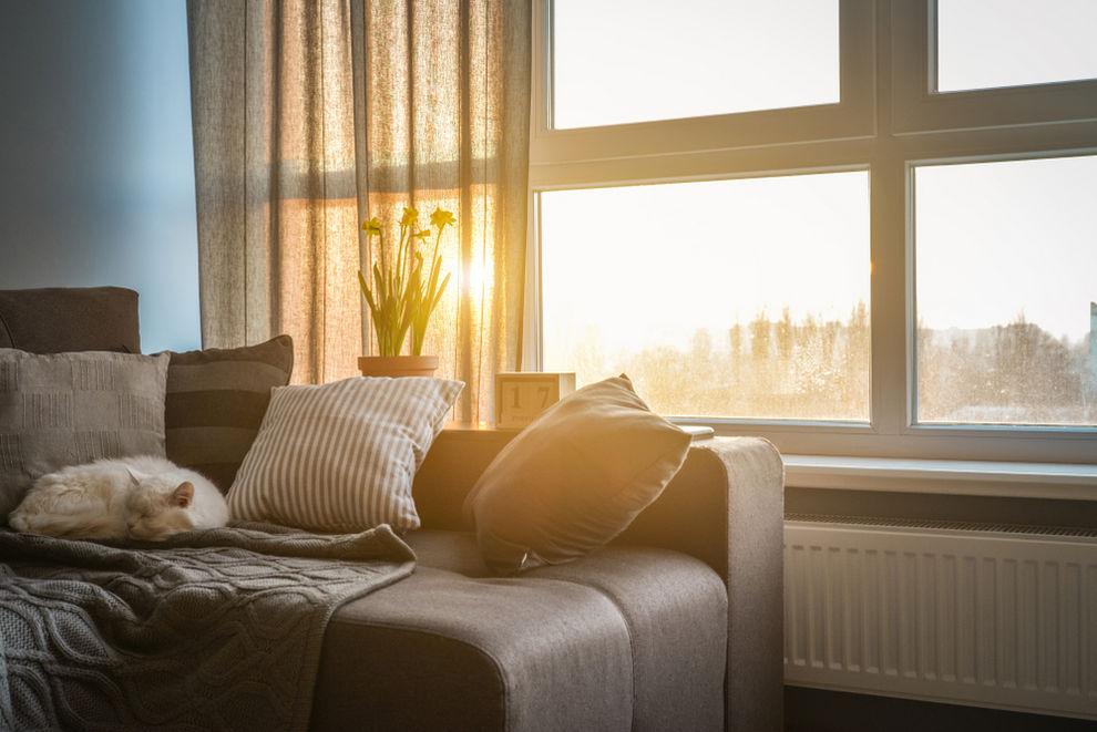 Interior view of living room - ENERGY STAR windows